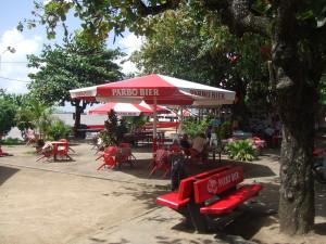 Waterkant, Suriname. Februari 2009. (foto: René Hoeflaak)