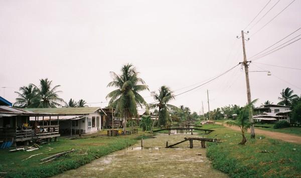 Plantage Rust & Werk,maart 2006 (foto: René Hoeflaak)