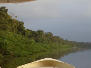 Vanaf het resort 's ochtends vroeg met een bootje varen over de Saramacca. Zo nu en dan slingeren aapjes in de boomtakken langs de oever. (foto: René Hoeflaak)
