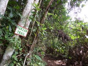 Februari 2014: Tarzan Trail bij resort Berg en Dal aan de voet van de Blauwe Berg (foto: René Hoeflaak)