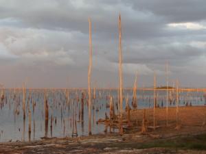 Februari 2014: Zonsondergang aan de oever van Matu Island aan het Brokopondomeer (foto: René Hoeflaak)