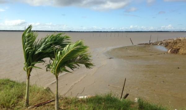 Suriname, oever Surinamerivier in Paramribo (foto: René Hoeflaak)