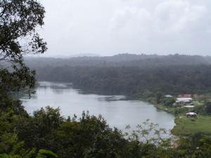 februari 2014: Surinamerivier bij Bergendal (foto: René Hoeflaak)