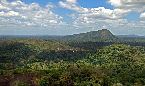 Tafelberg (bron: http://de.wikipedia.org/)