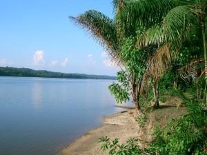De .Marowijne, grensrivier tussen Frans Guyana en Suriname (foto/bron: nl.wikipedia.org)