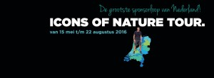 Icons of Nature