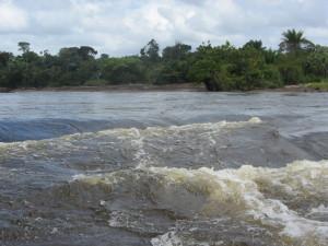 Suriname, Boven Suriname rivier, maart 2016. (foto: René Hoeflaak)