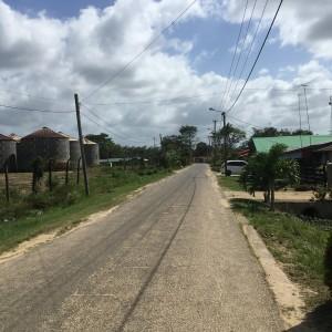 Wageningen, Suriname, 12 maart 2018. (foto: René Hoeflaak)