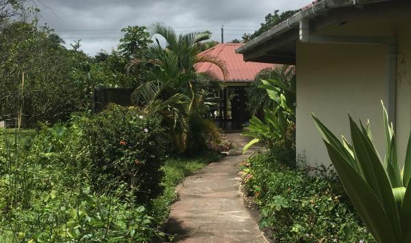 21 maart 2018: Wandelpad het Neotropical Butterfly Park (foto: René Hoeflaak)