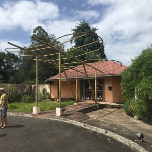 Lelydorp: Neotropical Butterfly Park, 21 maart 2018 (foto: René Hoeflaak)