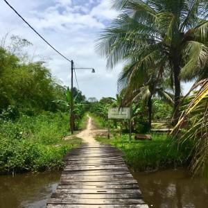 Suriname, Laarwijk, 24 maart 2018 (foto: René Hoeflaak)