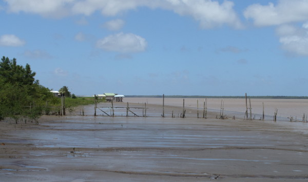 Suriname rivier, 3 februari 2014 (foto: René Hoeflaak)