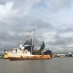 Suriname rivier, 21 maart 2018 (foto: René Hoeflaak)