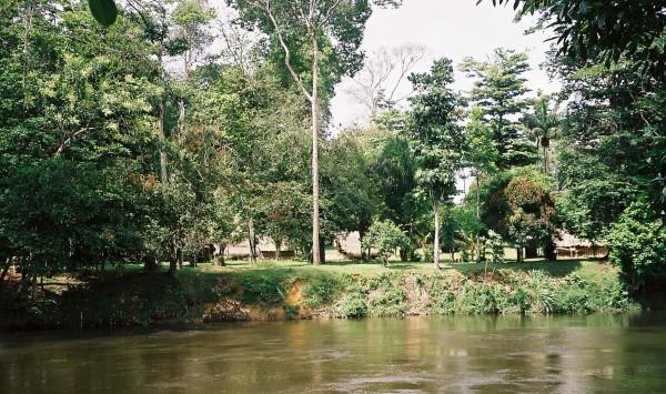 Suiriname, nabij Awarradam , maart 2006 (foto: René Hoeflaak)