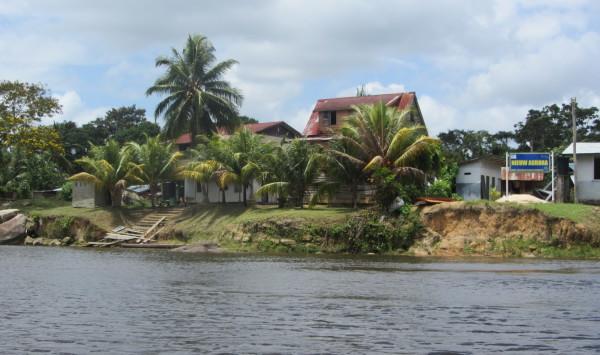 Suriname, Nieuw Aurora, 25 maart 2016 (foto: René Hoeflaak)
