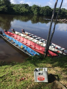 Februari 2017: Suriname rivier bij Jaw Jaw (foto:René Hoeflaak)