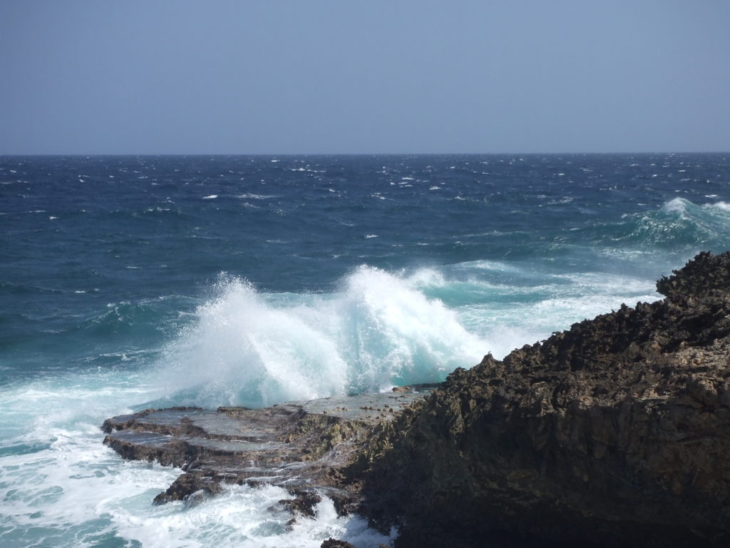 Curaçao, 22 januari 2010 (foto: René Hoeflaak)