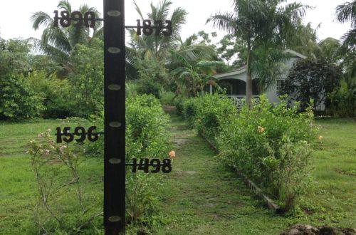 Plantage Bakkie