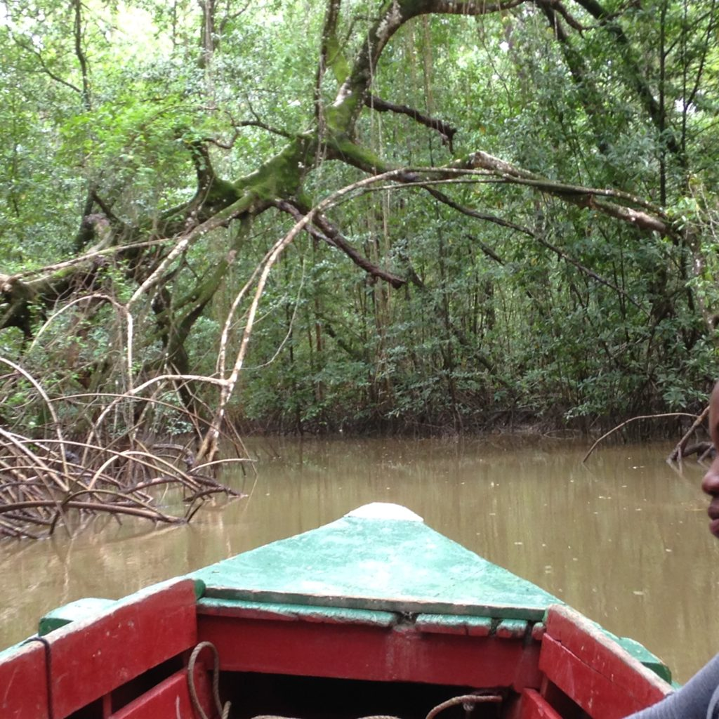 WarappaKreek Suriname