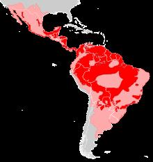 Leefgebied jaguar in Suriname