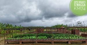 B4Agro&FoodSystems